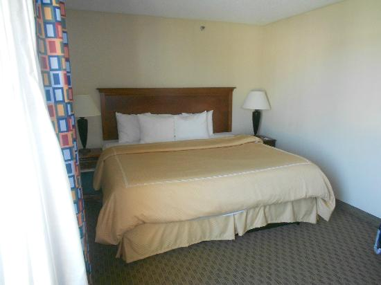 Comfort Suites Baymeadows: Large bed, well lit room