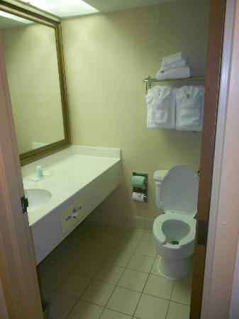 Comfort Suites Baymeadows: Small Bathroom, you cant get in the tub unless the door is closed!