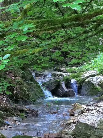 Restaurant de L'Etoile: Waterfall in Les Gorges