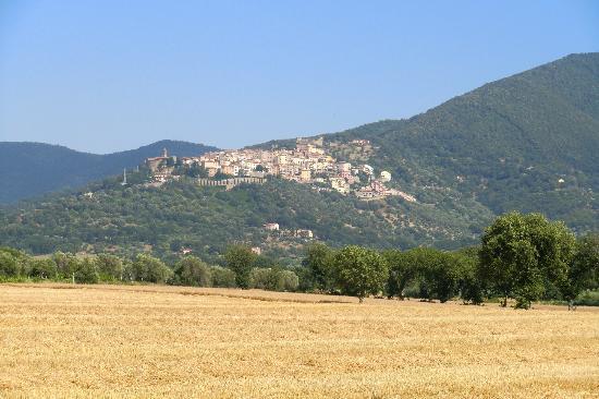 Aba Village: SCARLINO