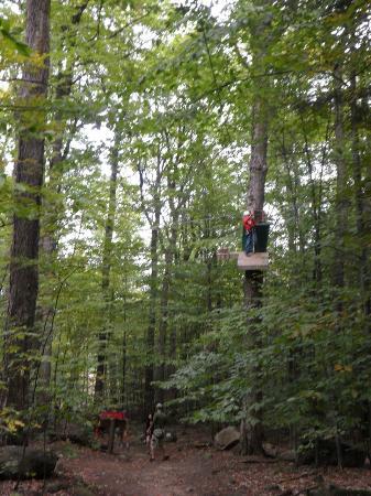 Arbraska Rawdon : platform in the trees