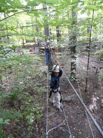 Arbraska Rawdon: aerial course