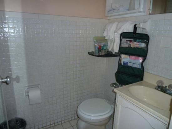 Seville Hotel & Apartments: small bathroom, with shower only