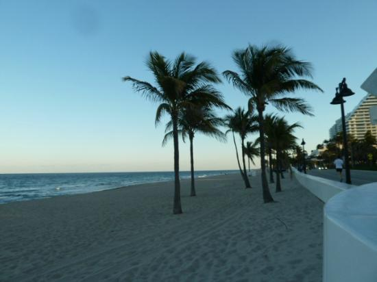Seville Hotel & Apartments: Ft Lauderdale Beach