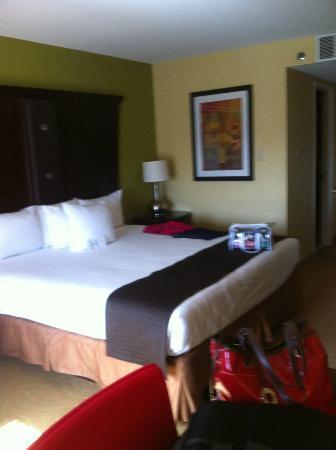 The Hotel Highland Downtown UAB: bed