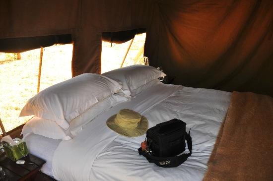 andBeyond Chobe Under Canvas: Queen size?