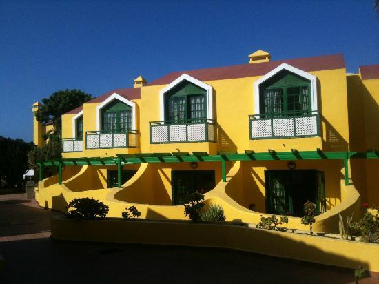 Caleta Playa Apartments: apartments