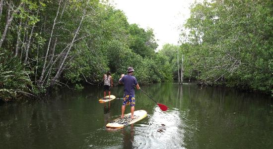 Costa Rica Surf & SUP: An unexplored river.... until now!
