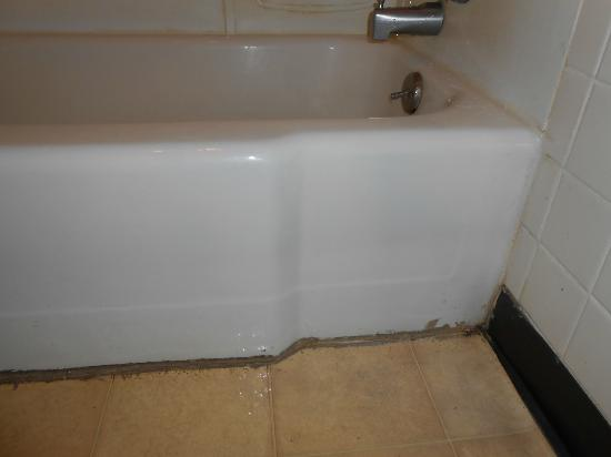 Red Carpet Inn North East: mold in and around tub (and long black hairs)