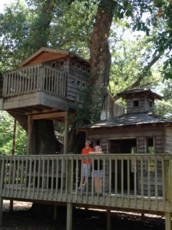 Lynn Meadows Discovery Center: Tree house