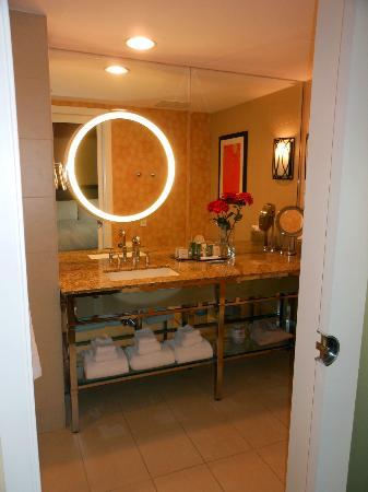 هياتون يونيفيرسيتي اوف هيوستون: Bathroom 