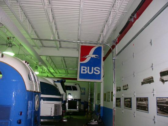 Greyhound Bus Museum: The indoor bus barn holds several vintage Greyhound buses from the 1920s to the 1980s.