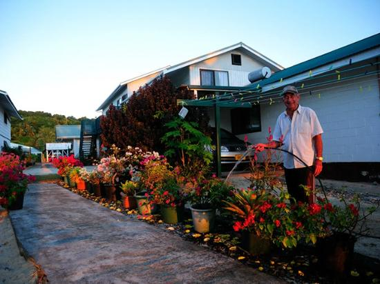 Rino's Motel: Rino and his flowers