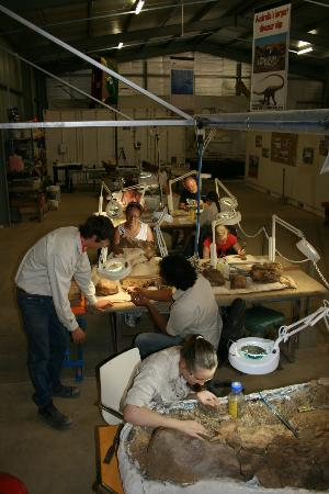 Australian Age of Dinosaurs Laboratory - working on real dinosaur bones