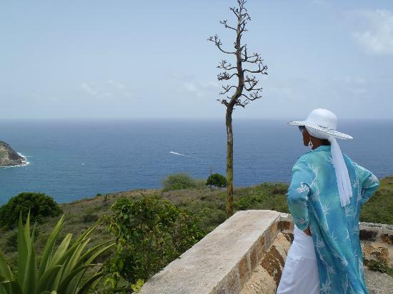 Luxury Safari Antigua: Mom enjoying the view