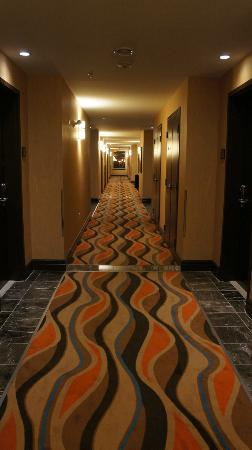 Comfort Hotel Bayer's Lake : contemporary look carpet in the hallway