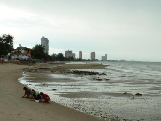 Cera Resort Chaam: beach