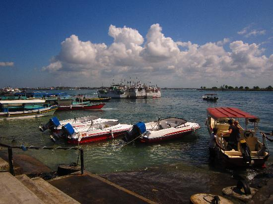 Benoa Marine Recreation Ocean Walker Tour: you can go to turtle island near this beach