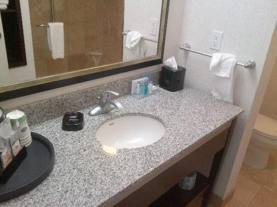 Hampton Inn by Hilton Fort Saskatchewan: vanity