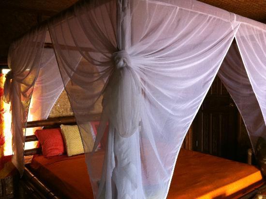 Anino Kite Retreat: room
