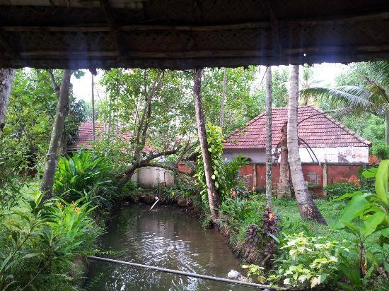 Kayaloram Heritage Lake Resort: view from room