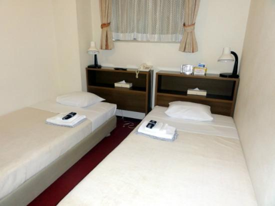 Hotel Yanagibashi: Twin Room (Bed Separate Type)