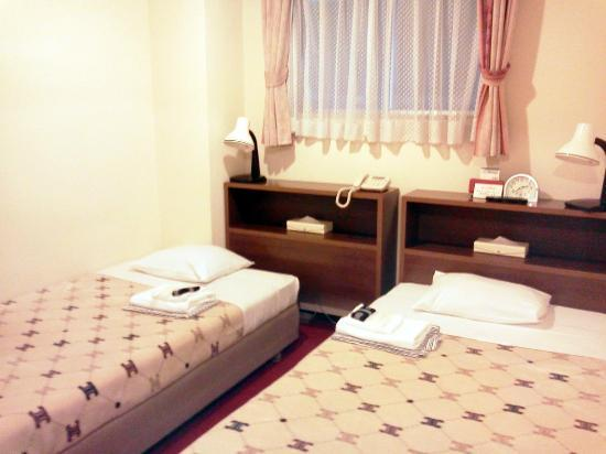 ホテル柳橋, Twin Room( Bed Separate Type )
