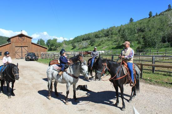 Moose Creek Ranch: Horseback rides