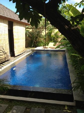 Arman Villas Seminyak: 2 bed villa pool.