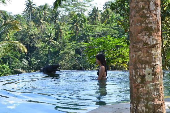Toya Retreat: Divine infinity pool