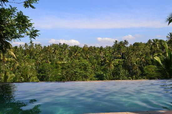 Toya Retreat: view from infinity pool