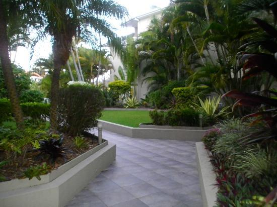 Surfers Del Rey Apartments: lovely grounds