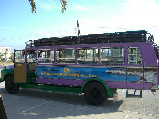 Bus Tours In Paphos