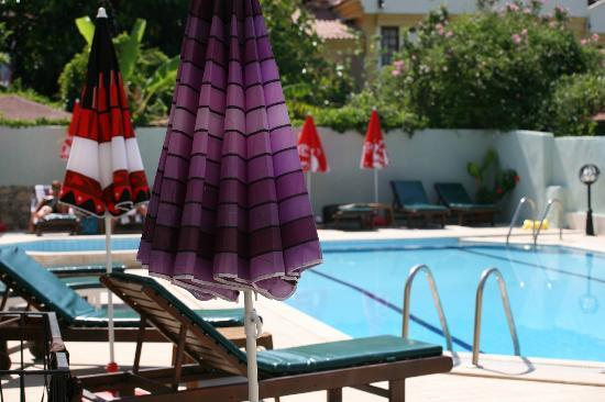 The Lemon Tree Hotel Restaurant: lemon tree hotel oludeniz swimming pool