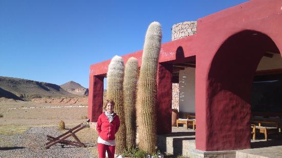 Susques, Argentyna: entrada al hotel