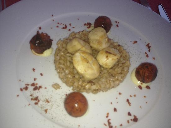 Restaurant Major: Very poorly cooked scallops. Compare with the other pic