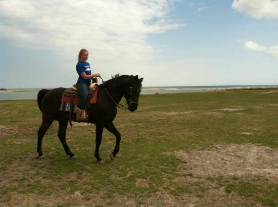 Outer Banks Riding Stables: Adriana on the Stallion