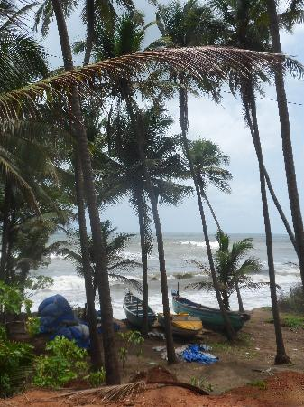 Goa, India: beach scene