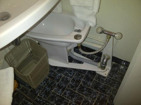 Grand Hotel du Parc: room 205 - swiveling bidet!