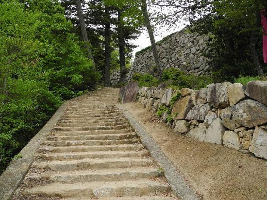 Bitchu Matsuyama Castle: 山道を登る 結構たいへん