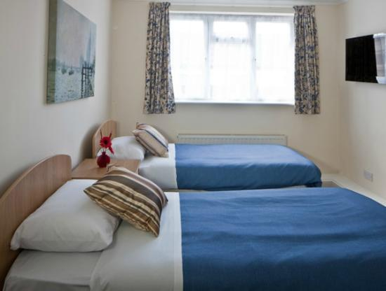 Montrose Guest House: Twin Room
