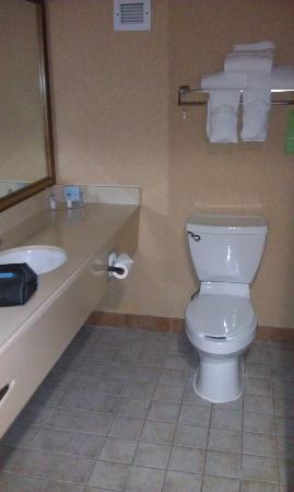 Best Western Plus Denver Tech Center Hotel: Bath