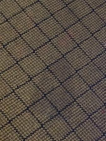 Stratford Hotel & Conference Center: carpet burnm, one of many
