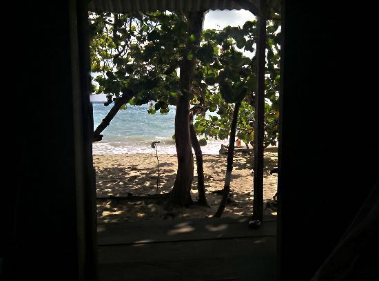 Carlito's Sunrise Paradise: View out our Door