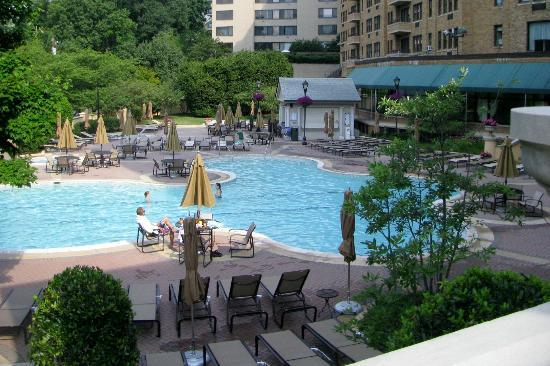 Omni Shoreham Hotel: The pool