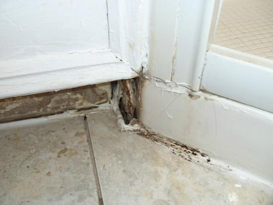 Astons Apartments: Base del lavello con sporco e muffa.