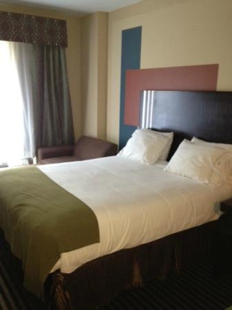 Holiday Inn Express Hotel & Suites La Place : room