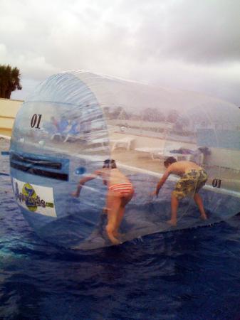Asylum Entertainment: Our wonderful AquaSausage
