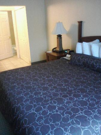 Staybridge Suites Tallahassee I-10 East: Huge king bed