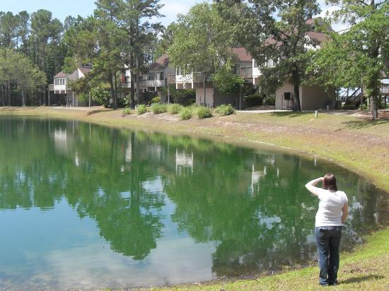 Waterwood Townhouses: Waterwood and Pond